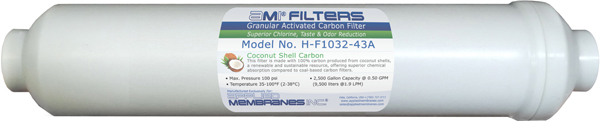 AMI In-line Carbon Filter