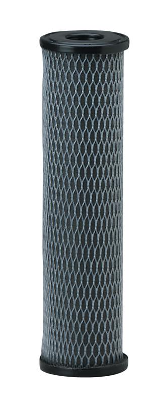 Pentek C1 Dual Purpose Carbon Sediment Filter