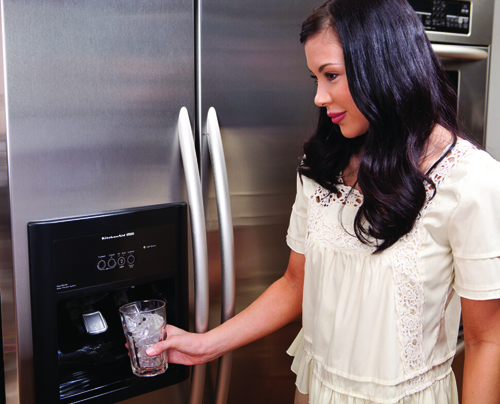 Flojet BW5000 Bottled Water Dispensing System Refrigerator